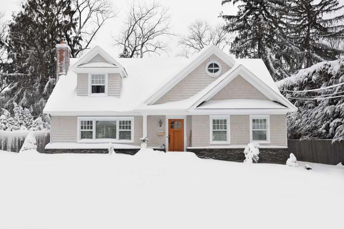Common Pests that Invade the Home During the Winter Season